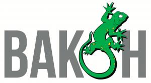 Vakon-classic-logo