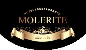 logo-molerite