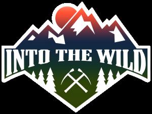 13_IntotheWild_Logo_BFF