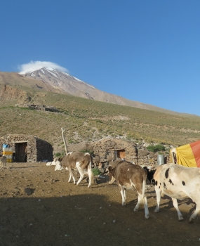 "Презентация ""Планините на Иран – Алан Кух 4750м."""