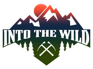 13_IntotheWild_Logo_BFF